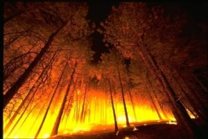 California authorities arrest man suspected of starting one of this wildfires